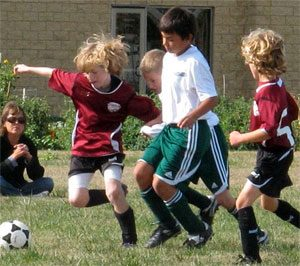 A bunch of boys play soccer together.